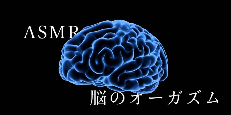 asmrとは_脳のオーガズム