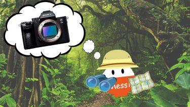 カメラが安く購入できる場所はどこ?徹底検証してみた